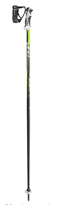 Ski Poles for 2019