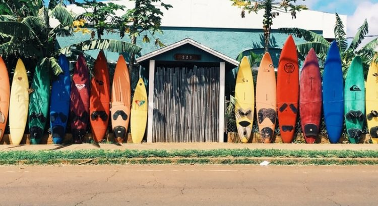 Different surfboards